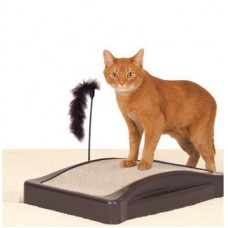 Cat Scratching Posts and Toys